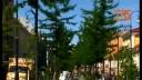 Маленькие детали большого города | Соборы. Собор Святого апостола Андрея Первозванного