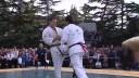 Единоборства, Турниры и чемпионаты | Турнир по киокусинкай каратэ