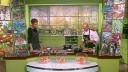 Лотерея вкуса | Рулеты из лосося и бекона со сметанным соусом и рукколой