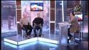Ближний бой | Карьера спортсмена. Джефф Монсон/Jeff Monson, Олег Раевский