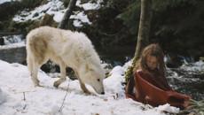 Выживая с волками