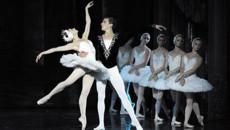 «Настрой кино!» приглашает на «Летние балетные сезоны»
