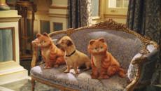 Гарфилд 2: История двух кошечек