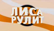 "<a href=""http://www.autoplustv.ru/our-projects/ownprograms/202304"">Лиса рулит</a>"