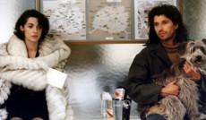 "<a href=""http://comediatv.ru/films/30847"">Требуется корректное поведение</a>"