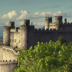 Строители замков