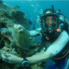 На морской глубине: Большой Барьерный Риф