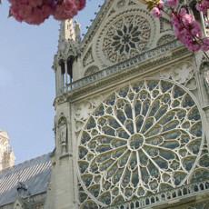 Собор Парижской Богоматери. Тайны средневековых зодчих