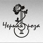 Телеканал «Ля-минор» выступит главным информационным партнером II Международного музы…