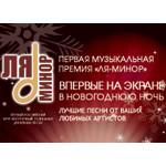 В Новогоднюю ночь состоится трансляция  первой  «Музыкальной премии телеканала «Ля-Ми…