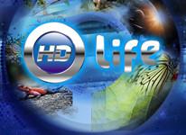 HD Life  объединяет своих поклонников «ВКонтакте»