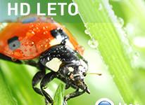 В фокусе «HD Leto» – объявлены финалисты фотоконкурса телеканала «HD Life»!