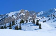 Наполняйте зимние дни яркими впечатлениями с телеканалом «HD Life»