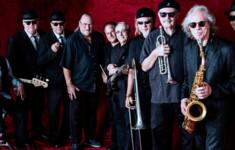 Телеканал «Ля-минор ТВ» приглашает на концерт группы The «Original» Blues Brothers