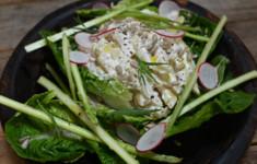 Салат с копченой сметаной, пенне, эстрагоном и спаржей