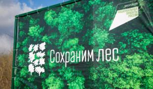 HDL поддерживает акцию «Сохраним лес»