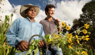 Маленькие фермы, грандиозные идеи